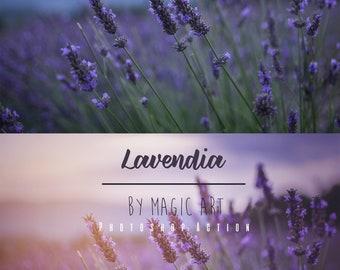 Lavendia - Photoshop Action