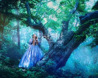 Forest digital background, magic backdrop, tree background, dreamy background, fairy tale backdrop, tree digital backdrop, mystic, fantasy