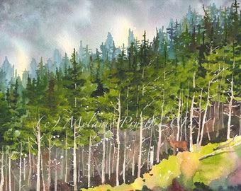 Coastal Forest ORIGINAL Pacific Northwest 12x16 watercolor painting nature wildlife deer by Melanie Pruitt