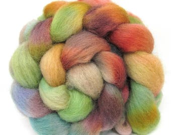 Dorset Horn Hand Dyed Combed Wool Top 100g DH68