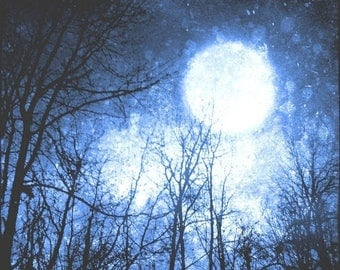 50% OFF SALE Blue Night Sky Photo, Surreal, Moon Art Print, Tree Photo, Forest, Black, Cosmic, Navy Blue, 5x5 inch Fine Art Print, Into the