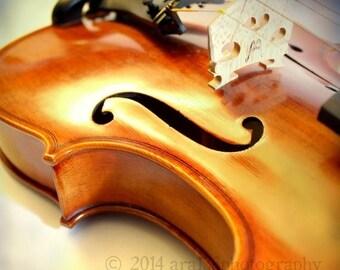 40% OFF SALE Violin Photo, Violin Picture, Music Art, Brown, Cream, Abstract Wall Art, Musical, 8x8 inch Fine Art Photograph - In a Dream