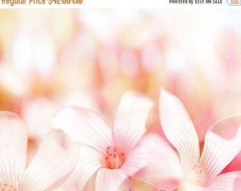 HUGE SUMMER SALE 40% off Flower Photography, Still Life Photography, Flowers,  Photos, Spring, Summer, Fine Art Print, Pink, Yellow, Home De