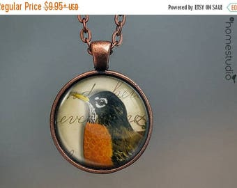 ON SALE - Robin : Glass Dome Necklace, Pendant or Keychain Key Ring. Gift Present metal round art photo jewelry by HomeStudio
