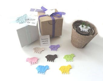 Set of 12 Lamb or Sheep Themed Flower Garden Kits, Personalized for Baby Girl, Boy or Unisex Baby Showers - USA Handmade by Nature Favors