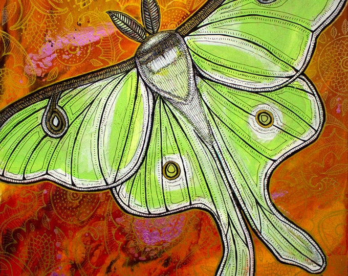 Luna Moth Painting by Artist Lynnette Shelley