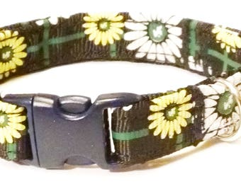 """Black with Daisy Flowers-Toy Breed Dog Collar--Size X-Small 8"""" to 12"""" adjustable"""