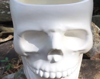 Skull, planter, skull planter, head planter, ceramic, matte white, succulent planter, succulent pot, unusual, house plant