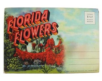 Vintage Florida Flowers Souvenir Folder