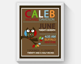 Owl Baby Boy or Girl Birth Announcement, Owl Nursery, Owl Birth Stats, Baby Birth Stat Wall Print