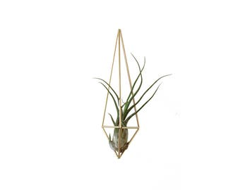 VENIA - Modern Geometric Ornament - Geometric Sculpture - Himmeli - Air Plant Holder