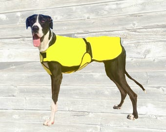 Dog Cool Coat, custom made just for your dog with tummy cooler for extra cooling, buckle closure
