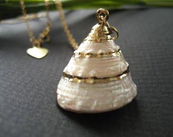 Summer Dream Seashell Necklace, Seashell Jewelry, Shell Necklace Gold Filled Chain, Nautical Jewelry, Beach Jewelry, Mermaid Jewelry, OOAK