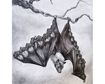 Bat Illustration- Beautifully dysfunctional- Leather and Lace- Bat- Nature- Pencil drawing- April Alayne