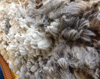 Raw Fleece, CVM Heritage Breed, Tara - REDUCED PRICE