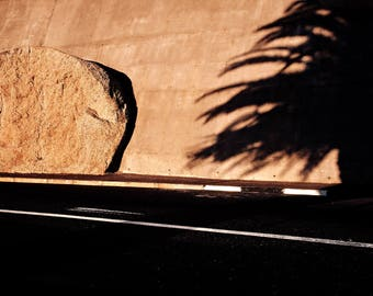 Rock and Palm