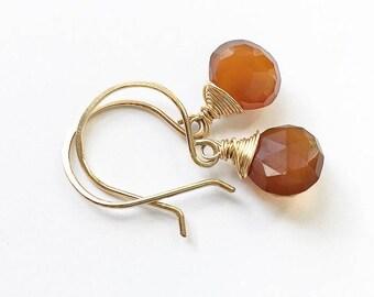Deep Carnelian Teardrop Earrings + 14k Gold Fill