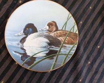Plate. Lesser Scaup  Vintage Federal Duck Stamp Collectors dish - 1990 Numbered and signed Neal Anderson First Issue
