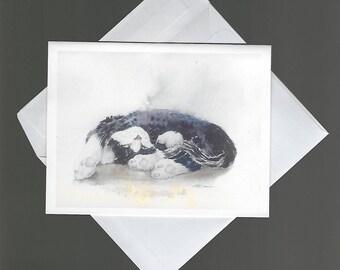 Note Card sleeping kitten Just Bored bowman blank inside notecard 4x6 happypaints domestic pet cat feline