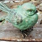 andyourbirdisgreen