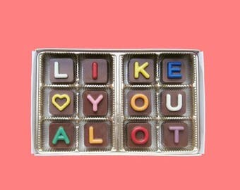 ship AFTER 8/7 I Like You A Lot Chocolate Boyfriend Gift for Men Girlfriend Gift Her Anniversary Gift for Women Funny Romantic Jelly Bean Cu