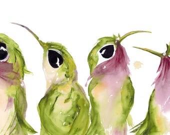 Large Hummingbird Art Print,  Four hummingbirds  Art Print, 12 x 18 Colorful Hummingbird Art