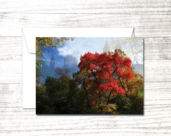 NYC Note Card | Central Park Greeting Card | Red Tree | Blank Greeting Card | Upper Westside view