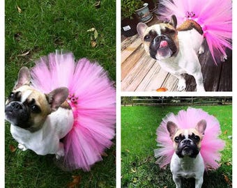 Hot Pink Dog Tutu