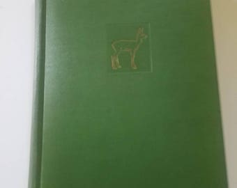 First Edition BAMBI A Life In The Woods Felix Salten 1928 Simon and Schuster