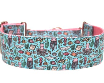 "Summer Dog Collar 2"" wide Martingale Dog Collar for Large Breed Dogs"
