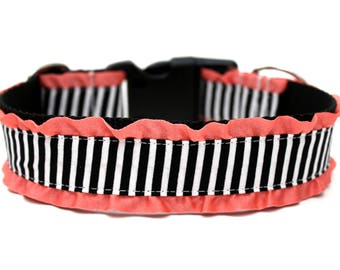 "Black and White Striped Dog Collar 1.5"" Coral Ruffle Dog Collar"