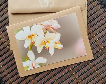 Floral Blank Greeting Card