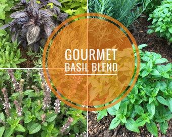 Gourmet Basil Seeds, Heirloom Basil Seed Blend, 5 Varieties of Heirloom Basil Seeds, Grow Your Own Organic Basil