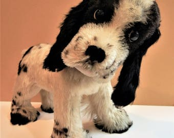 x Large Vintage Steiff Cocker Spaniel Dog Cockie ID & Collar German Collectible Art Toy Minty