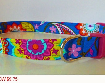 "Sale - 50% Off - Paisley Floral Dog Collar - Royal Blue with Multi-Paisley Flowers - ""Paisley Spree"" - Free"