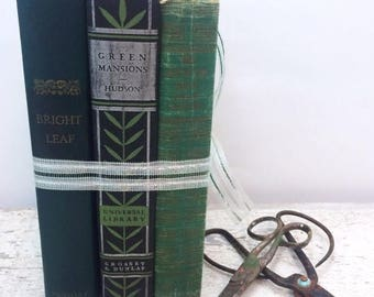 SUMMER SALE Instant Collection - Stacked Set of Three Green and Black Vintage Books
