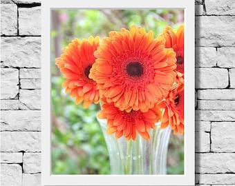 Orange Gerbera Daisy Print, Flower Print, Daisy Photo, Daisy Picture, Flower Print, Orange Daisy Print, Nursery Art, Flower Photo, Daisy