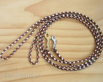 Fine Kangaroo Leather Dog Show Lead Braided in Dark Chocolate, Saddle Tan & White Lace with Small Clip.- Lead On Jeddah