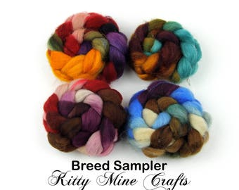 Breed Sampler Kit - 4oz of Roving - Polwarth, Corriedale, Shetland, BFL - Spinning, Felting - Simple, Unblended Wool