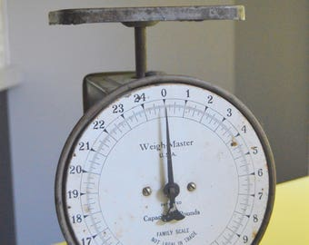 Vintage Scale, Gray Chippy Paint, Bird Wren, Farmhouse Kitchen, Hanson Chicago, Weigh Master