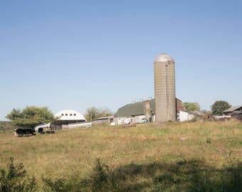 Farm, Rustic, Cows, Silo, Barn, New England Fall Photographs