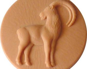 Cabochon Capricorn zodiac sign blank for jewelry pendants ornament piece to decorate