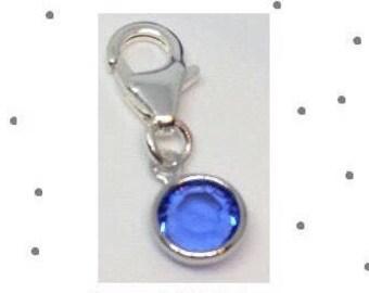 Sterling Silver Birthstone Colour Clip Charm
