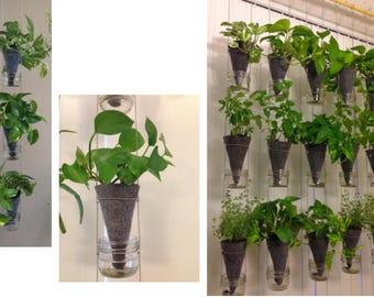 Made to order, Suspended vertical garden with glass water reservoir; visible water level. (1 column made of 3 plant containers)