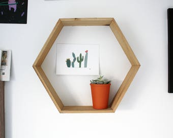 Cacti 2.0 Postcard