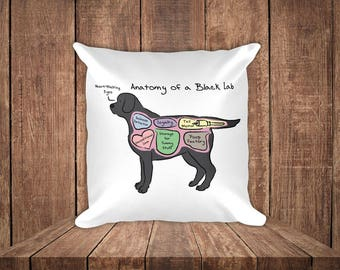 Anatomy of a Black Lab - Funny Labrador Retriever Square Pillow