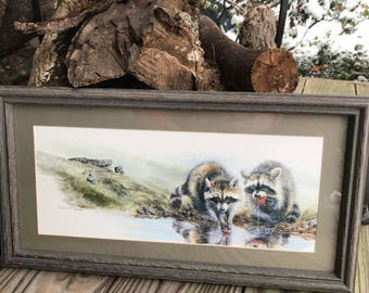 Denise D. Nelson Raccoons Pair Eating Strawberries at River Rectangular Framed Print 1990s Excellent Nature Woods Forest Animals Cabin