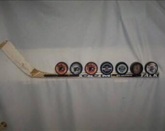 10 Puck Hockey Puck Display