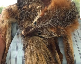 Genuine red fox stole from the 1940s