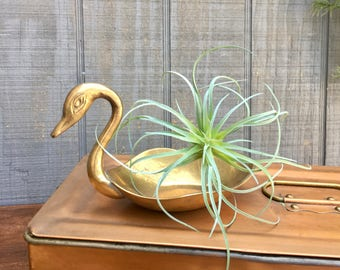 Vintage Brass Swan Shaped Trinket Dish, Planter